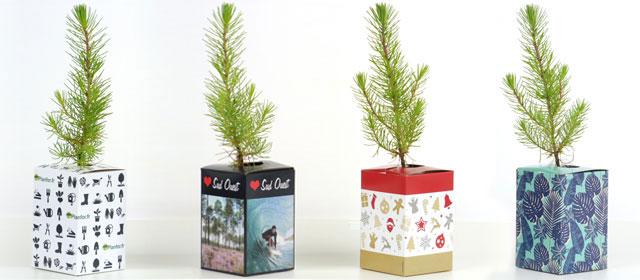 Nature Gift Box