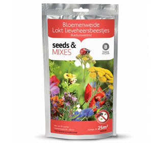 Flowering mix to attract Ladybirds