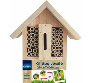 Bio diversities kit, specific pollinating insects
