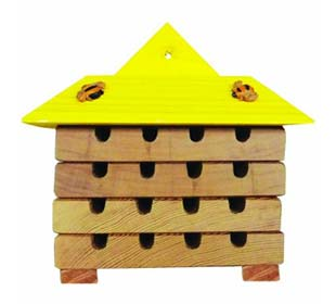 Hive for Solitary Bees