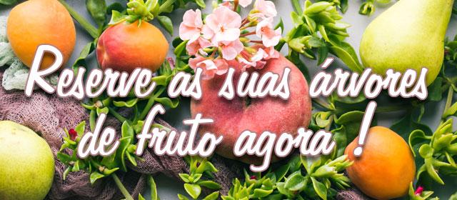 Reserve as suas árvores de fruto agora !