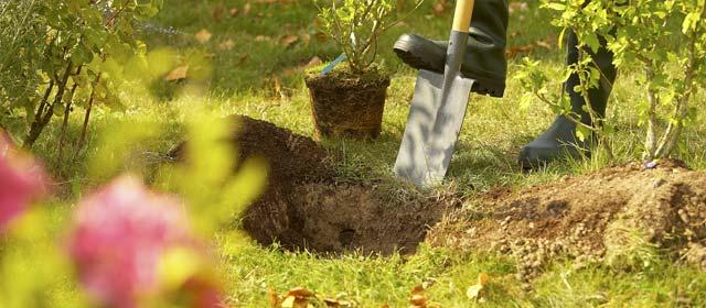 Matériel pour travail du sol
