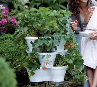 Macetas Corsica Vertical Garden