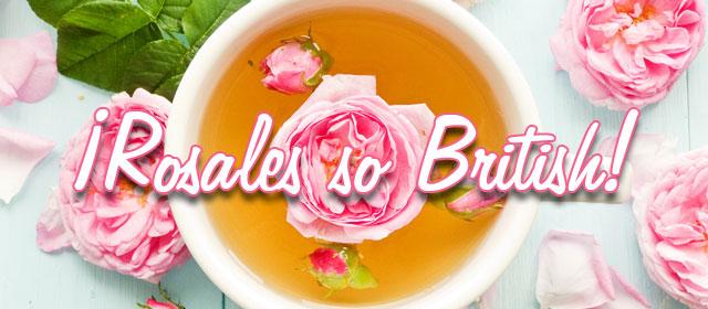 ¡Rosales so British!