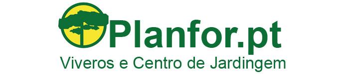 Planfor.pt