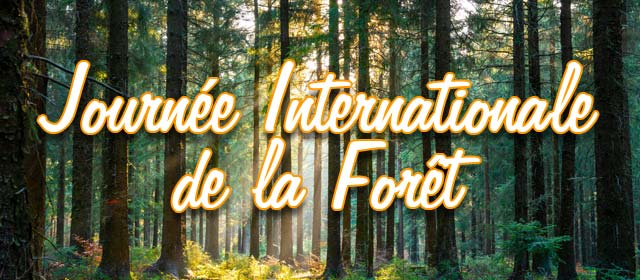 Journée Internationale de la Forêt