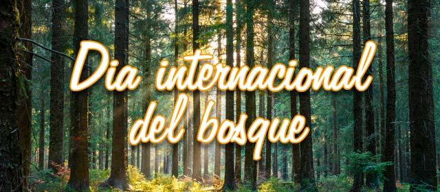 Dia internacional del bosque