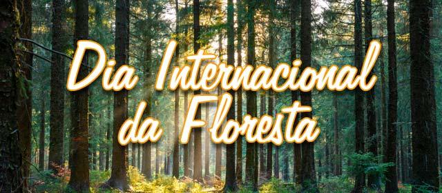 Dia Internacional da Floresta