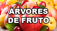 �rvores de fruto