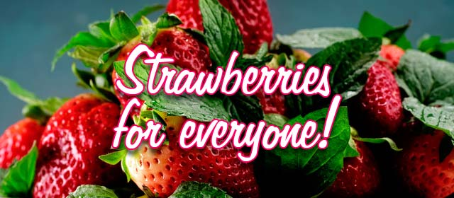 Strawberries for everyone!