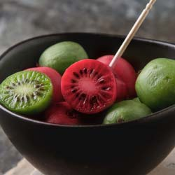 Red or green hardy Kiwi